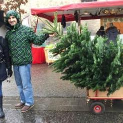 Bretten Wochenmarkt - Weihnachtsbaumverkauf